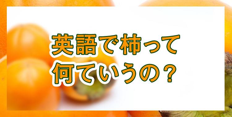 柿を英語で、世界の「柿」事情、ネイティブキャンプ