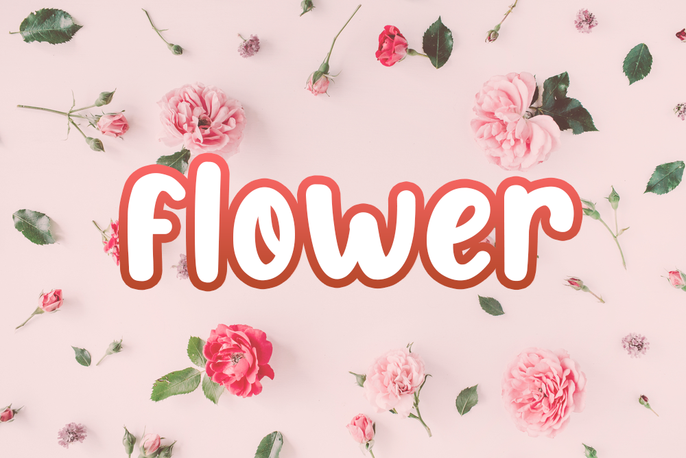 花の英語名一覧!花の種類や花言葉、使えるフレーズなどを紹介