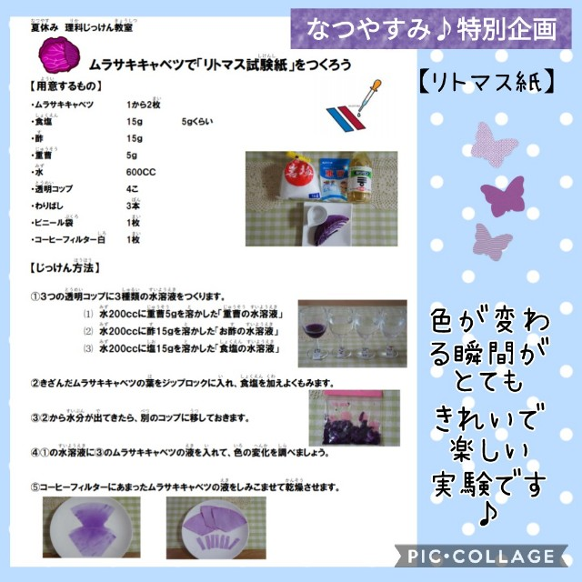 f:id:natokoyo40:20210720223429j:image
