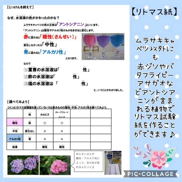 f:id:natokoyo40:20210720223457j:image