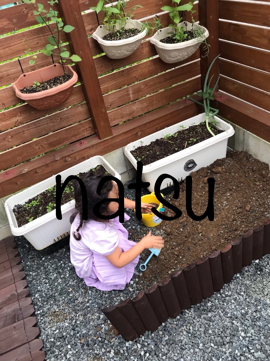 f:id:natsu16family:20190722132510j:plain