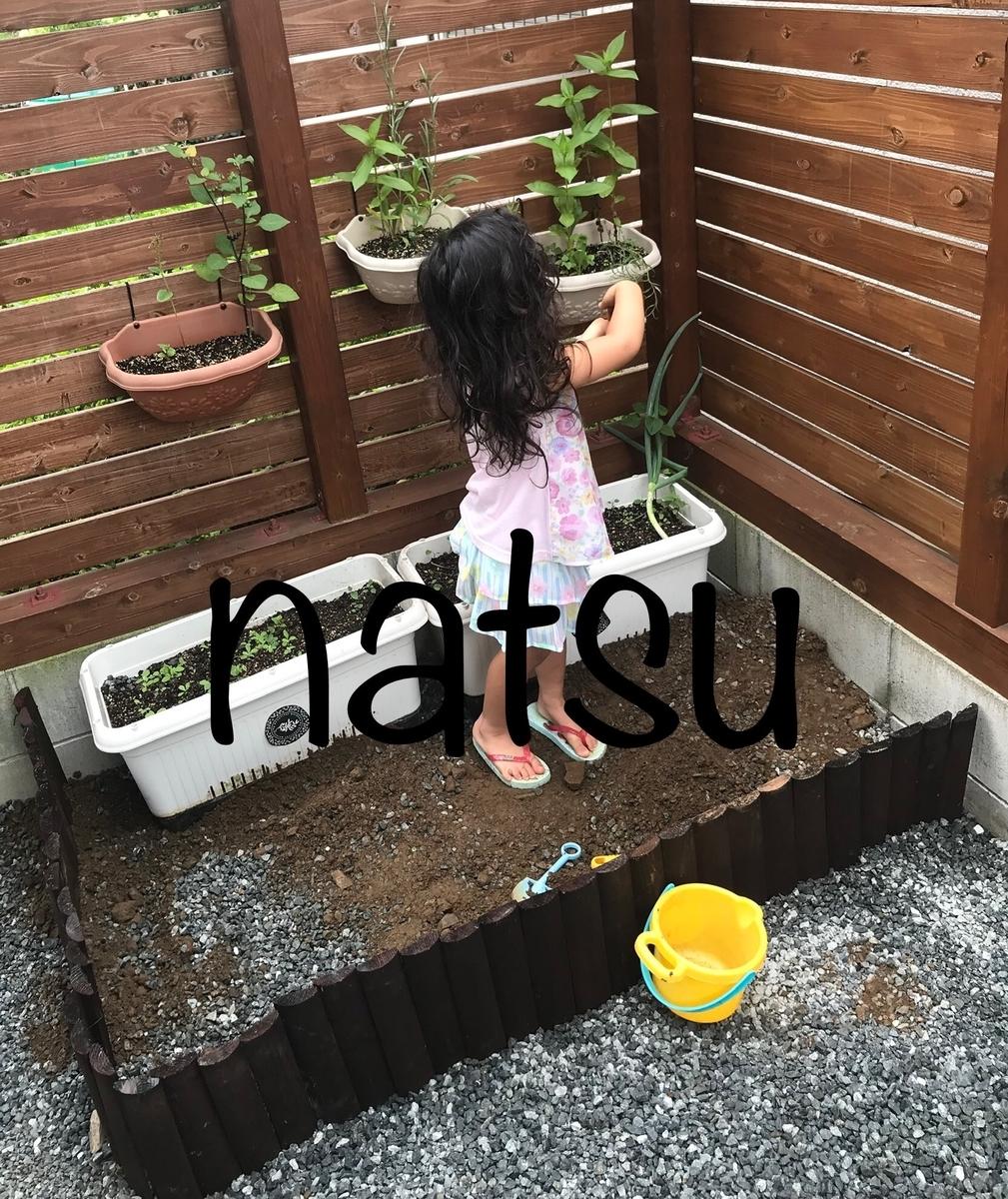 f:id:natsu16family:20190722132834j:plain
