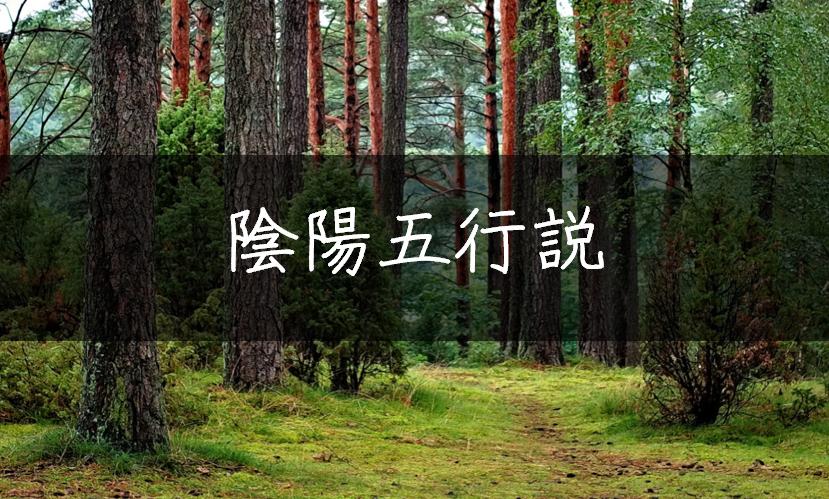 f:id:natsu_no_hi:20190308205644p:plain