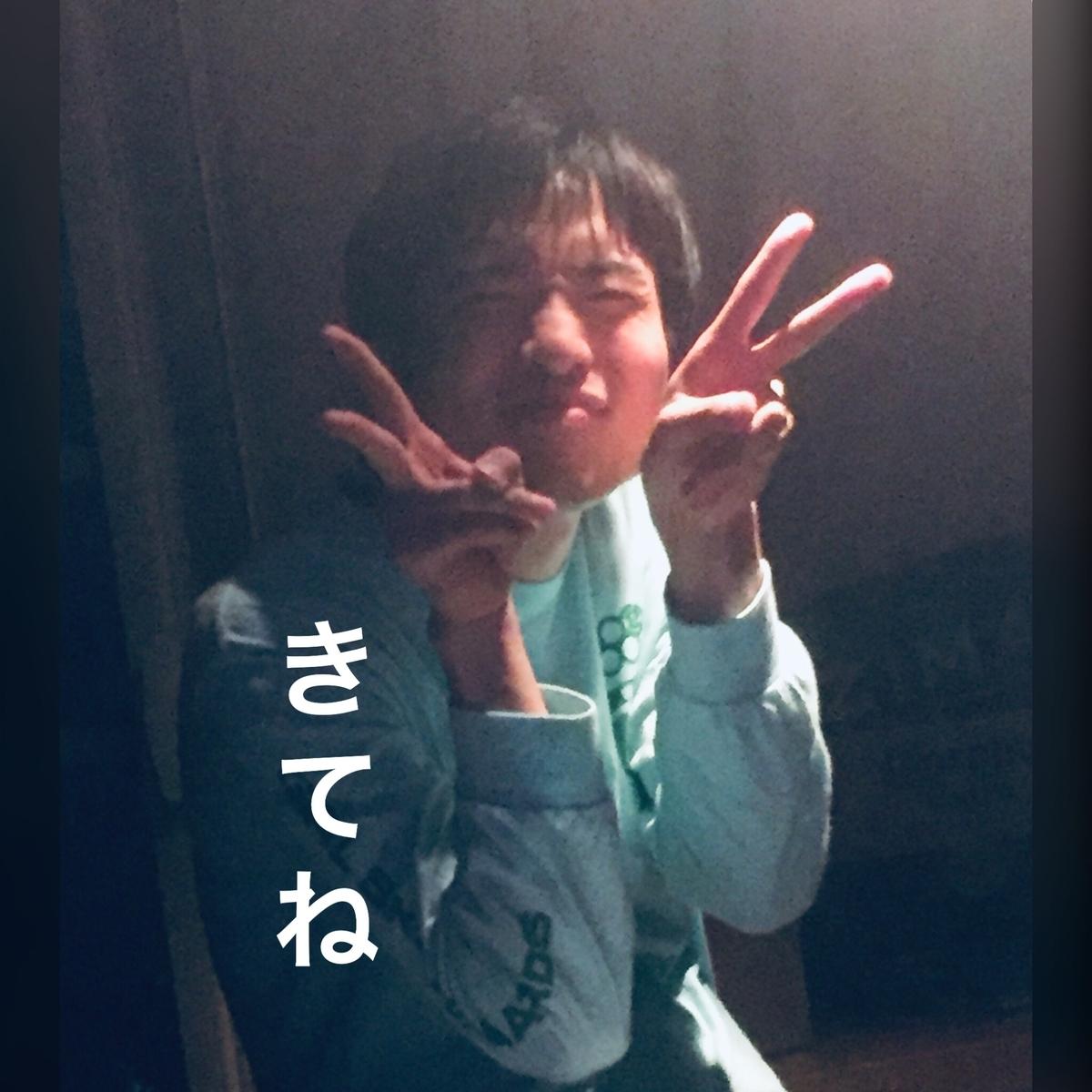 f:id:natsudoki2019:20190618150106j:plain