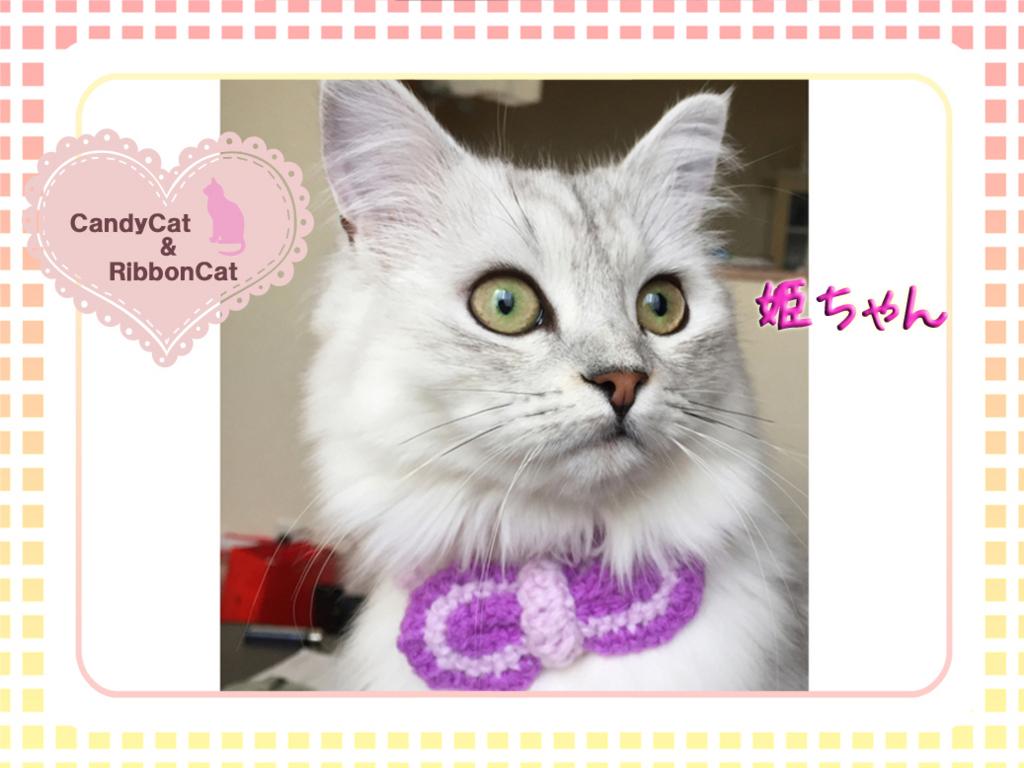 f:id:natsugakuru:20170608170322j:plain