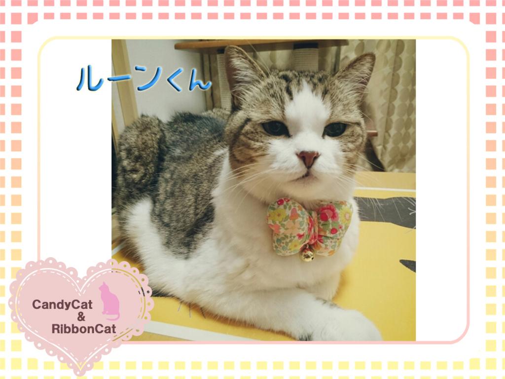 f:id:natsugakuru:20170707133122j:plain