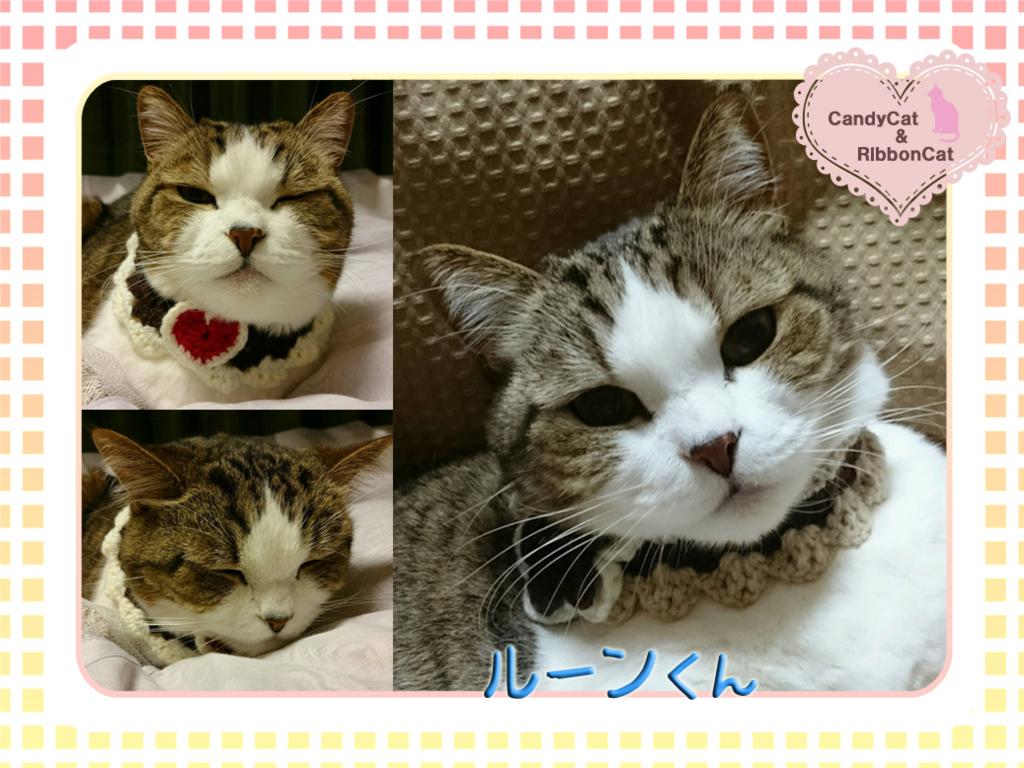 f:id:natsugakuru:20170707133132j:plain