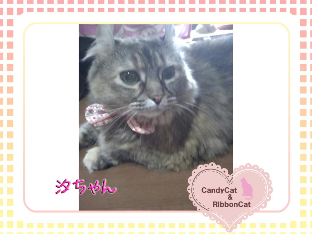 f:id:natsugakuru:20170718190608j:plain