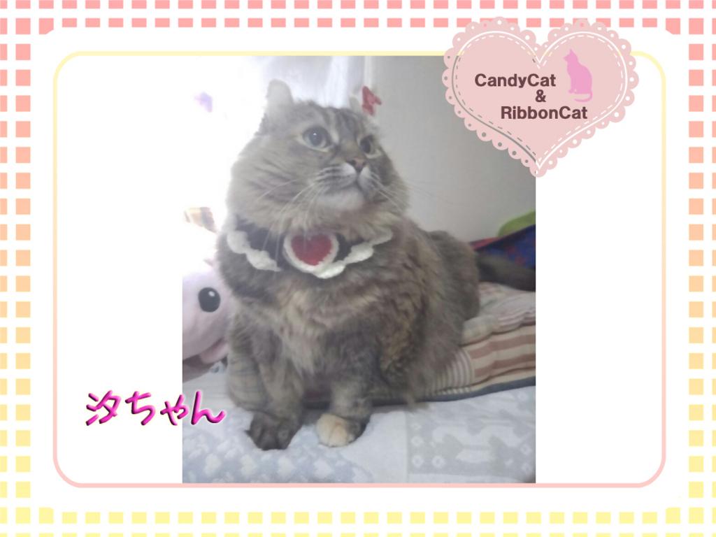 f:id:natsugakuru:20170718190620j:plain