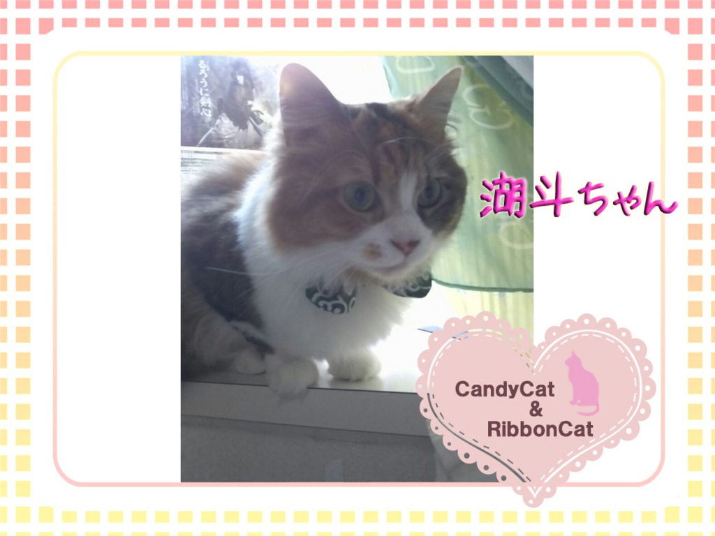 f:id:natsugakuru:20170804191335j:plain