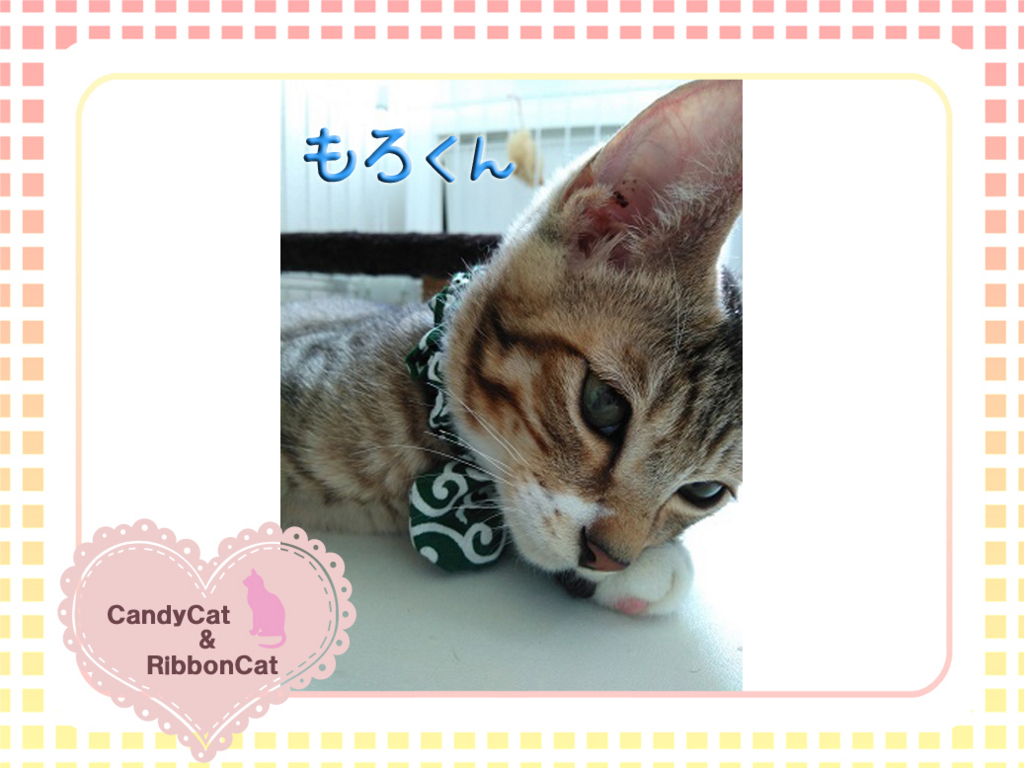 f:id:natsugakuru:20170804191704j:plain