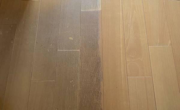 f:id:natsuka-k:20201018103232j:plain