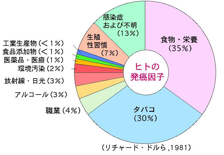 f:id:natsuki_dame0:20190527233839p:plain