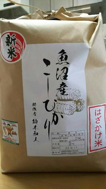f:id:natsuki_natsu:20161104122605j:image