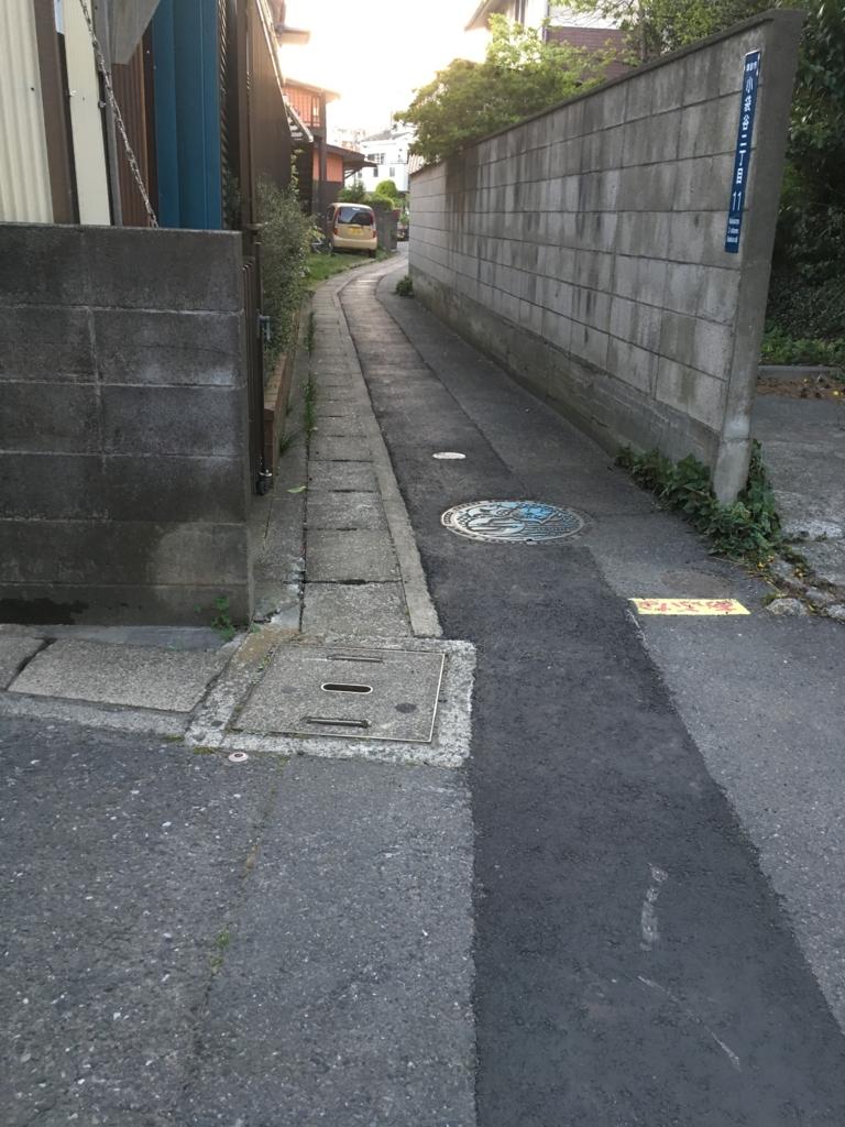 f:id:natsukichi000:20170420004806j:plain