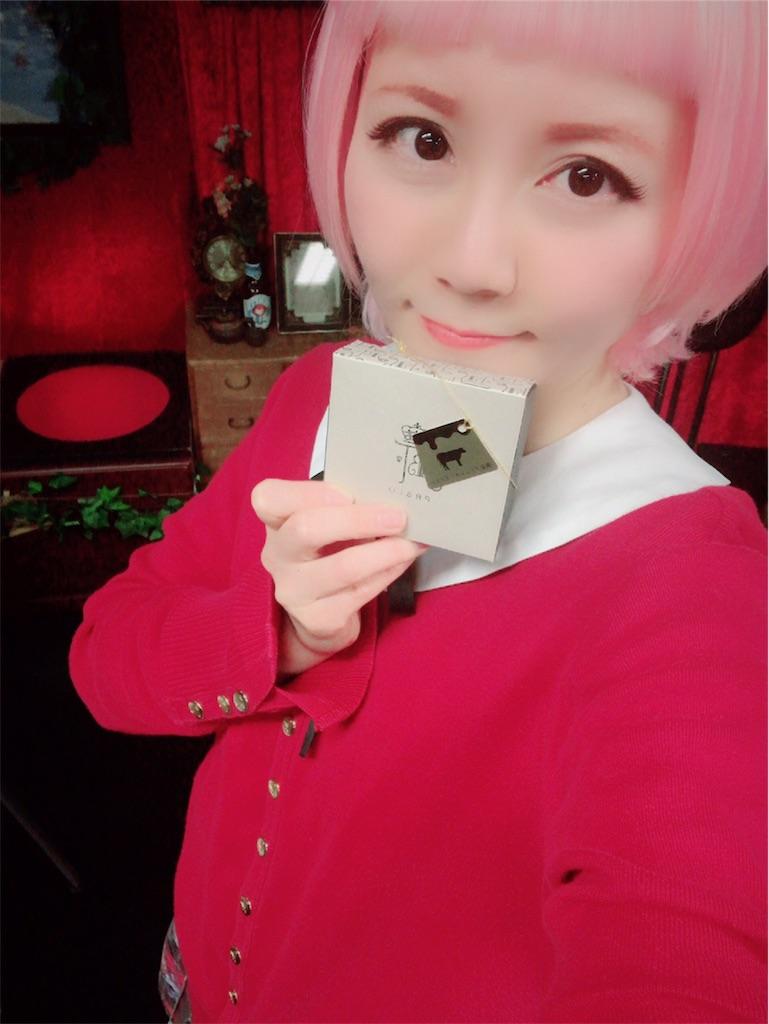 f:id:natsukigojo:20190201092250j:image