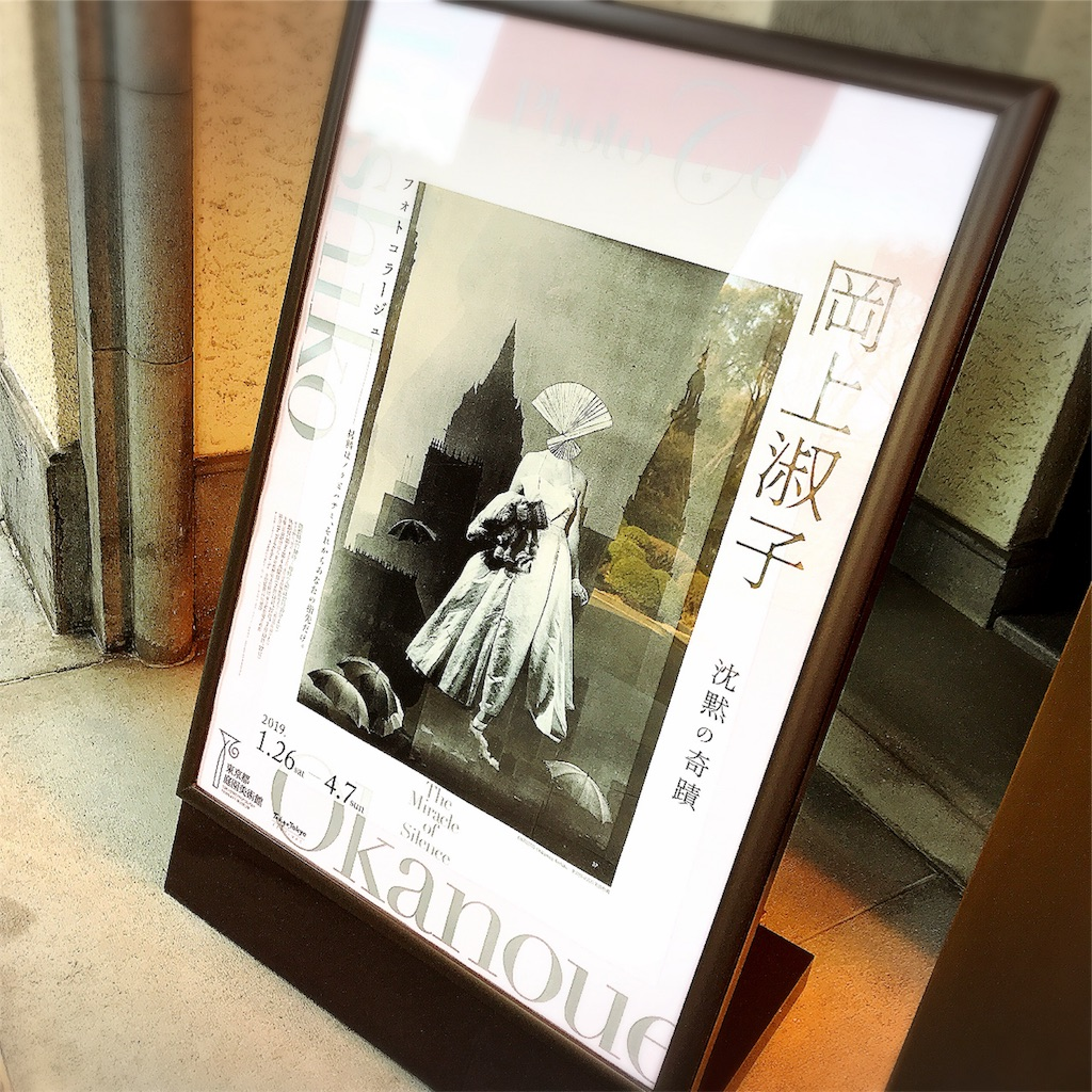 f:id:natsukigojo:20190225190048j:image