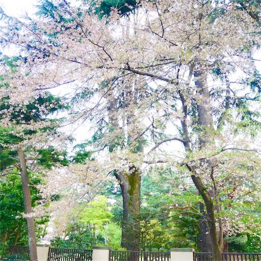 f:id:natsukihana:20180402214616j:image