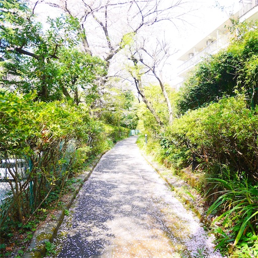 f:id:natsukihana:20180402214718j:image