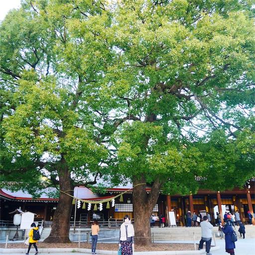 f:id:natsukihana:20181226102825j:image