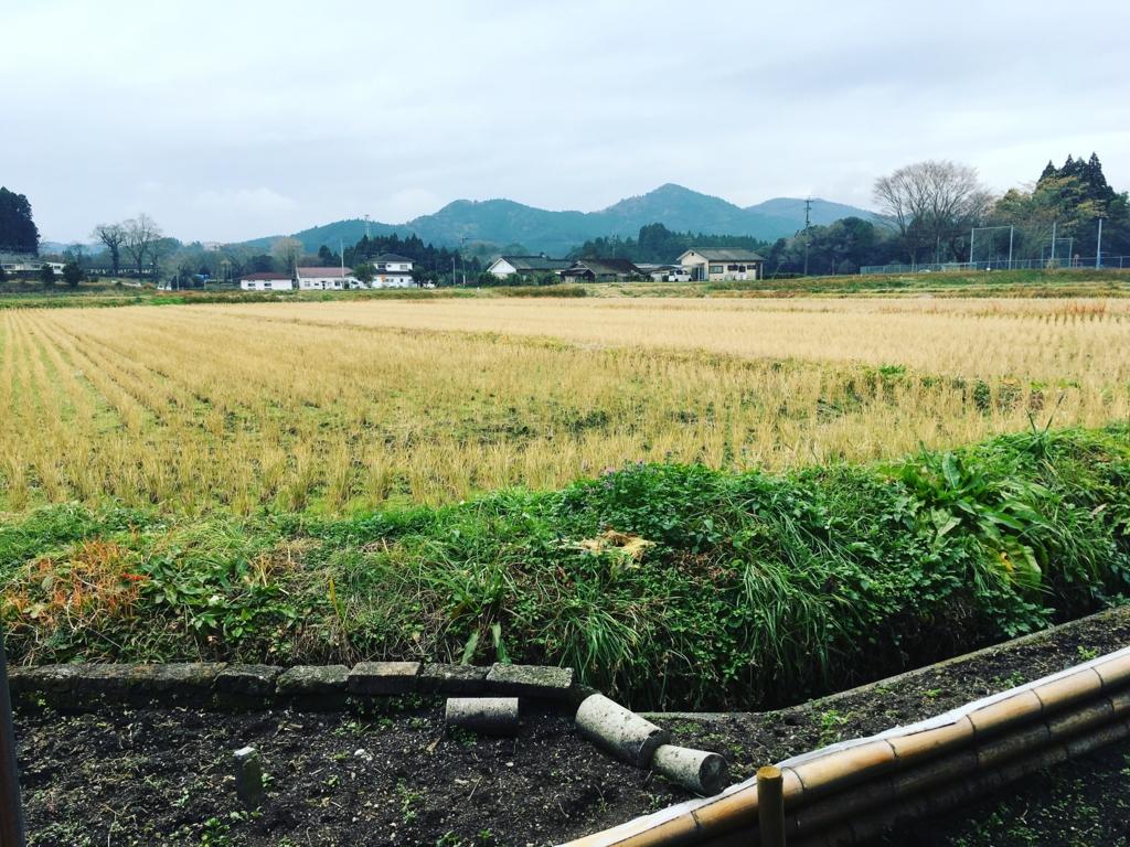 f:id:natsuking-15:20170219233009j:plain