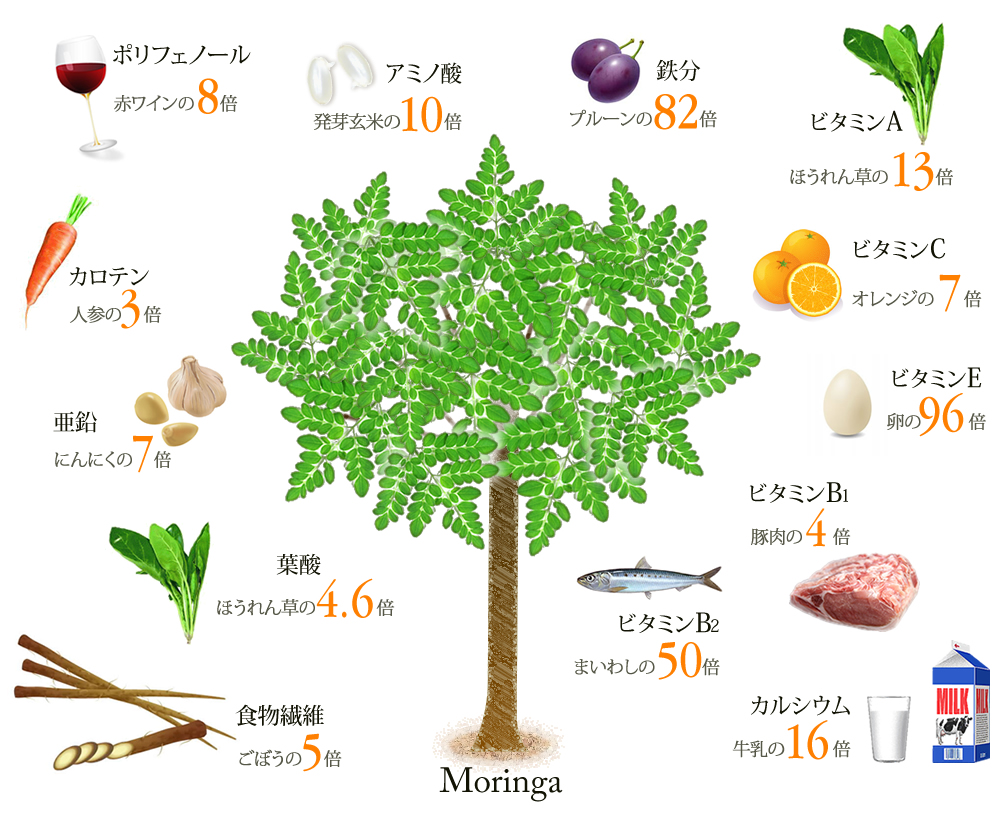 f:id:natsuking-15:20170318112227j:plain