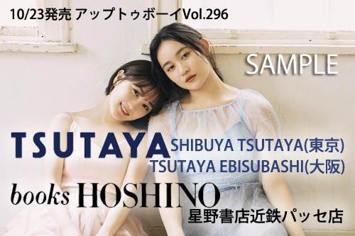 f:id:natsukirinkun:20201017065750j:plain