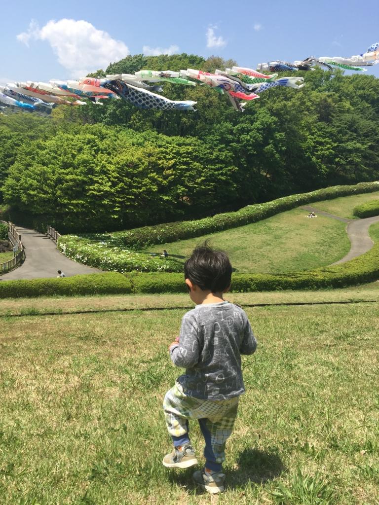 f:id:natsuko0430:20170523065140j:plain