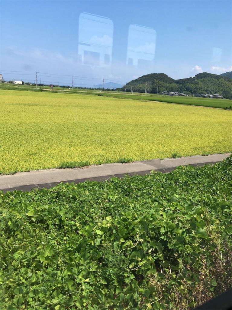 f:id:natsume-jun:20180804172328j:image
