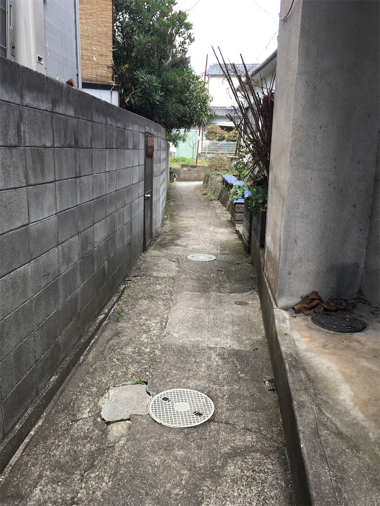 f:id:natsume-jun:20190308164823j:image