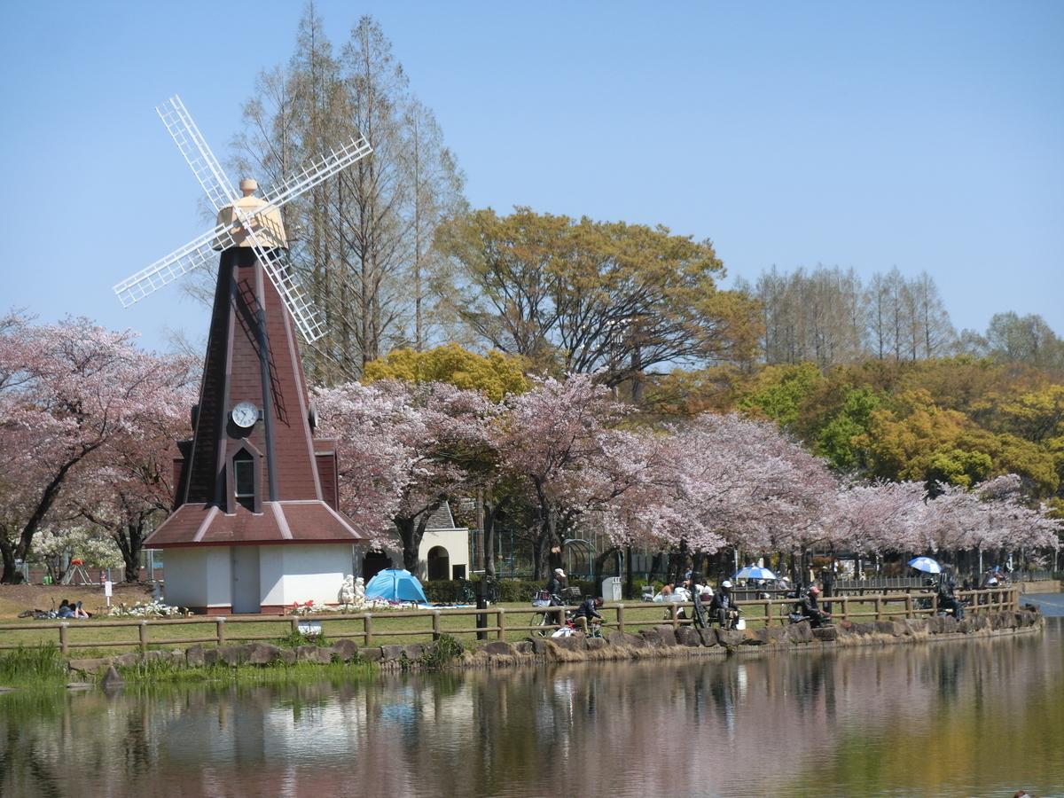 f:id:natsumikan88:20190413163513j:plain