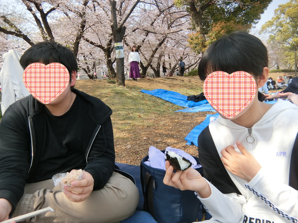 f:id:natsumikan88:20190413164859p:plain