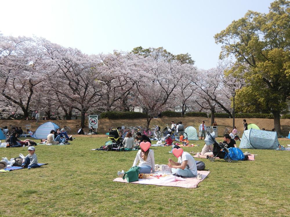 f:id:natsumikan88:20190413170857p:plain