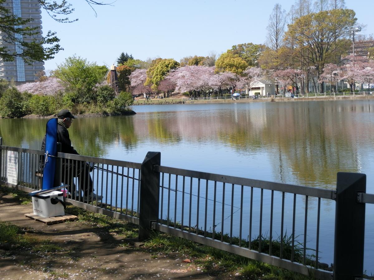 f:id:natsumikan88:20190413175630j:plain