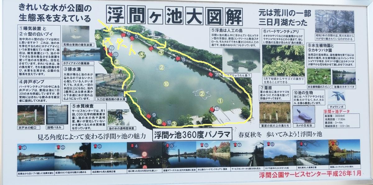 f:id:natsumikan88:20190415124527j:plain