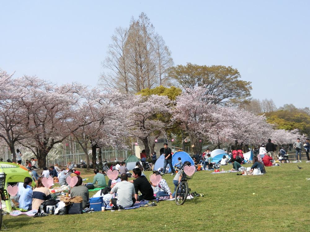 f:id:natsumikan88:20190415130740p:plain