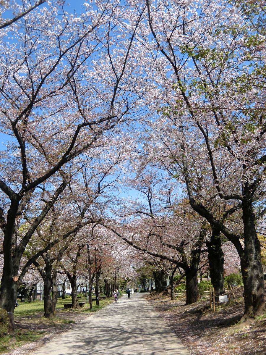 f:id:natsumikan88:20190415153219j:plain