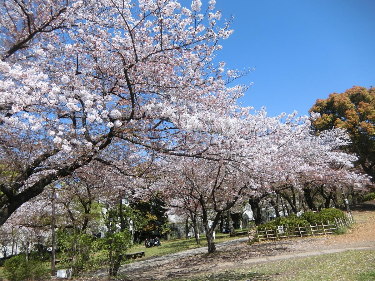 f:id:natsumikan88:20190415160217j:plain