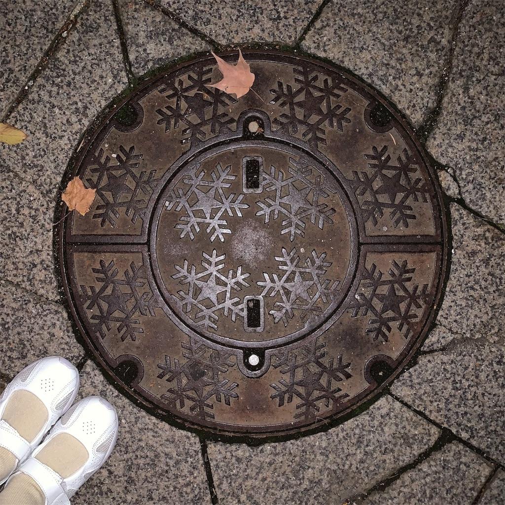f:id:natsuno_soucho:20200520233200j:image