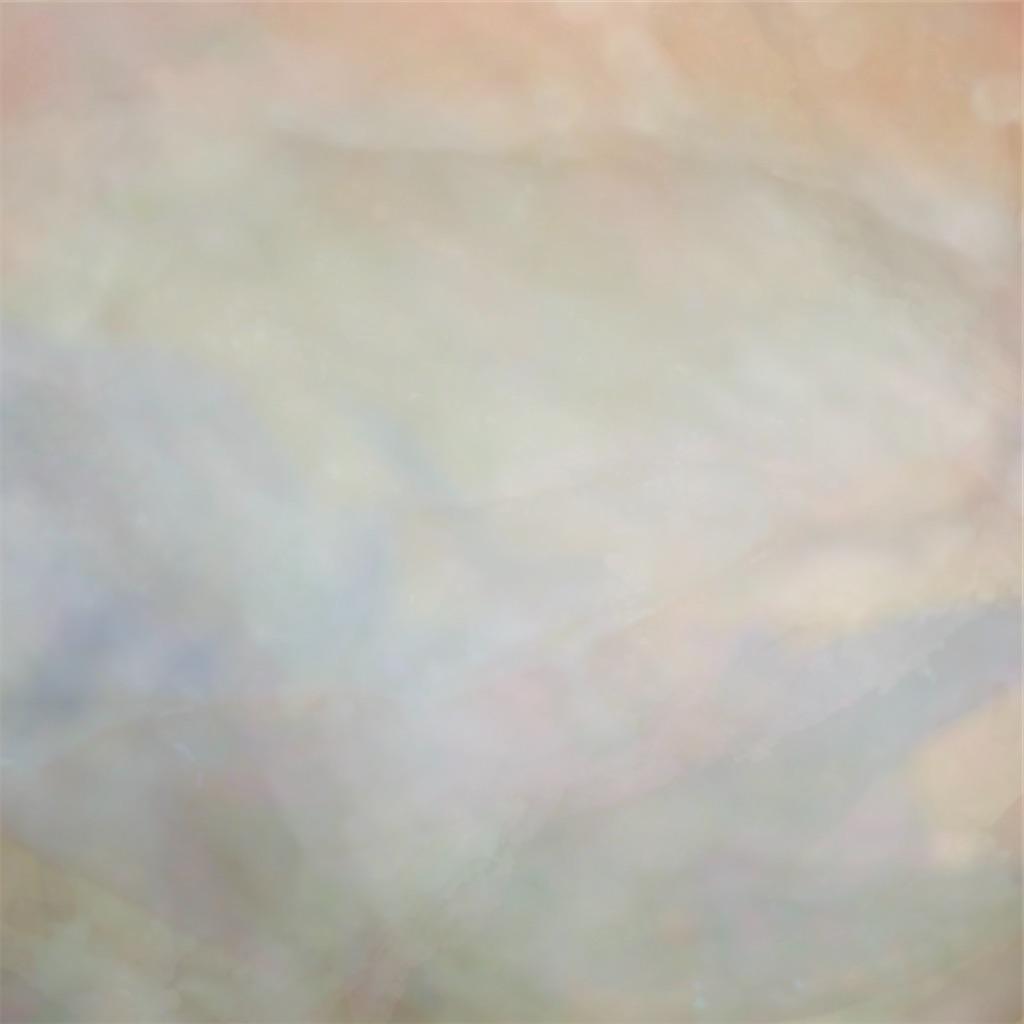 f:id:natsuno_soucho:20210203001343j:image