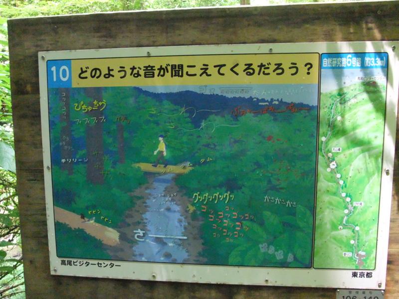 f:id:natsunokujira:20100811120024j:image:w380