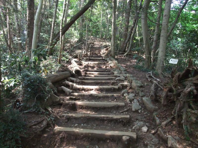 f:id:natsunokujira:20100823122812j:image