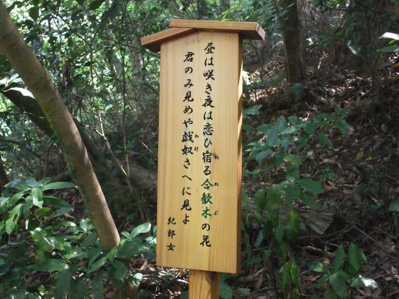 f:id:natsunokujira:20100827110618j:image:w300