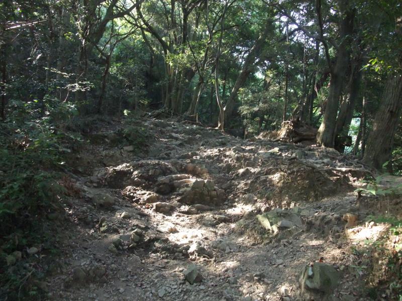 f:id:natsunokujira:20100827143727j:image