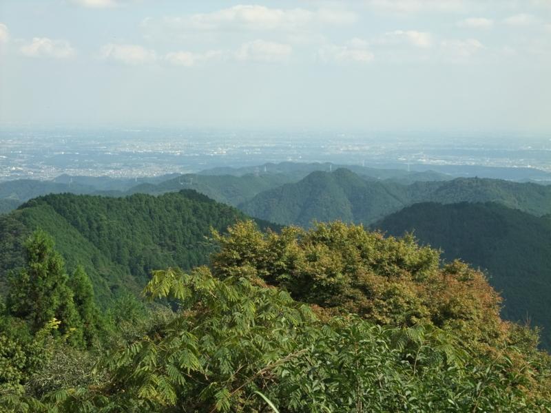 f:id:natsunokujira:20100918133542j:image
