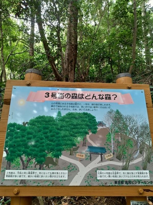 f:id:natsunokujira:20201012160407j:plain