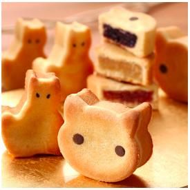 猫型パイナップルケーキ