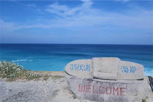 羽伏浦海岸はサーファーで有名なビーチ