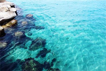 海の底、水面の煌めきもきちんと映る!