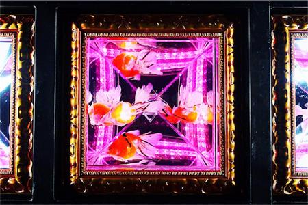 入り口天井の金魚